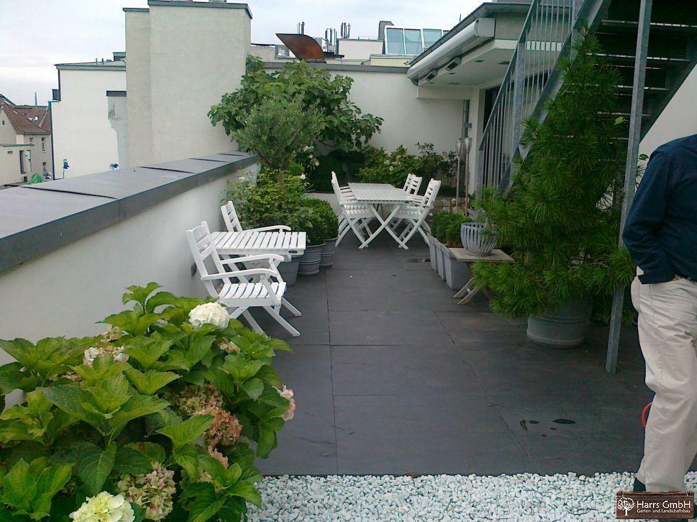 Gestaltung Dachterrasse neubau harrs garten und landschaftsbau gmbh